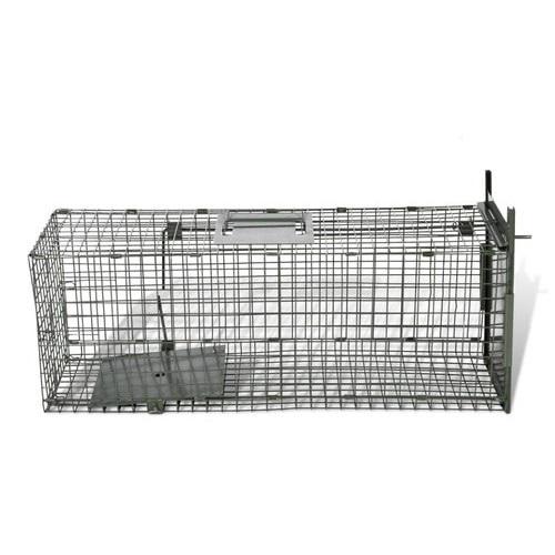 Trampa captura conejos