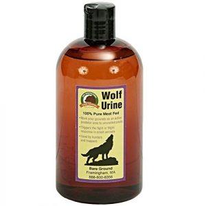 Esencia de orina de lobo